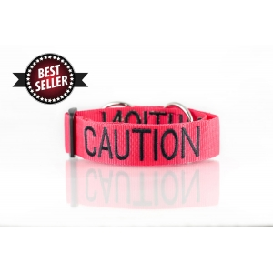 Caution Dog Collar
