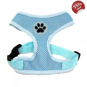 Plain Blue Harness
