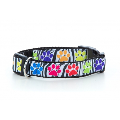 Paw Prints Collar