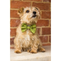 Green Tweed Bow Tie