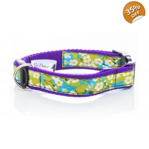 Liberty Mitsi Collar