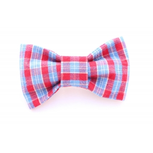 Axel's Blue and Red Plaid Bow Tie