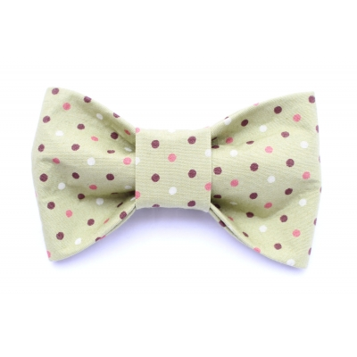Riley's Polka Dot Bow Tie title=