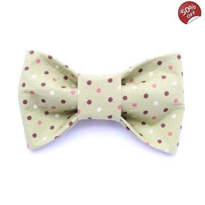 Riley's Polka Dot Bow Tie
