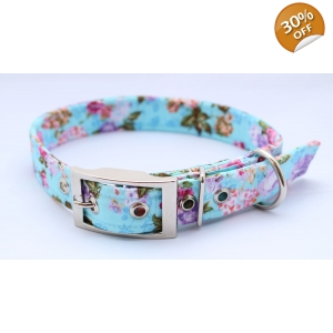 Blue Roses Buckle Dog Collar