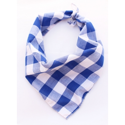 Southern Blue Plaid Bandana
