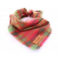 Frayed Moss Green & Red Tweed Bandana - Scamps