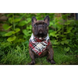 Personalised Alfies Plaid Tartan Bandana