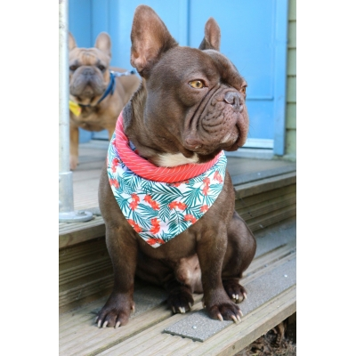 Peppercorn Pink Orchid Double Sided Bandana