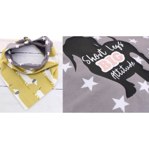 Dachshund Attitude Double Sided Bandana