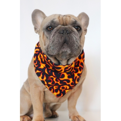 Flamin' Hot Bandana