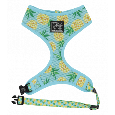 Pine For You Classic Harness