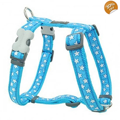 Blue Star Red Dingo Harness