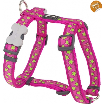 Pink Star Red Dingo Harness
