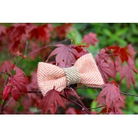Orange Herringbone Luxury Tweed Bow Tie
