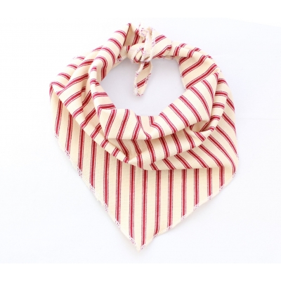 Cranberry Stripe Bandana