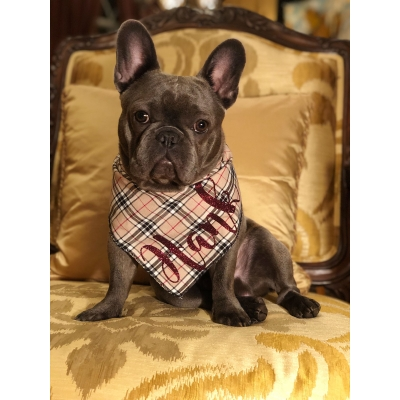Personalised Barkberry Plaid Chocolate Glitter Bandana