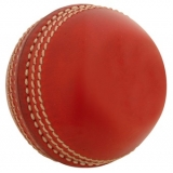Gray-Nicolls Miniature Ball