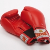 Eastside Sparring Gloves - MENS