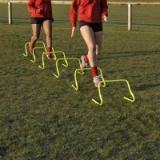 Central Adjustable Agility Hurdle