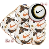 6 Nike Premier Team Balls and Net
