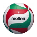 Molten Intermediate Lightweight Volley..