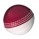 GM Skills Cricket Ball