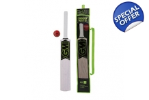 Gunn & Moore Paragon Cricket Set