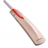 GRAY-NICOLLS PRO PERFORMANCE CRICKET BAT