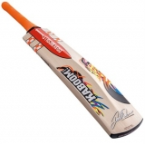 GRAY-NICOLLS DAVID WARNER 31 JUNIOR CR..
