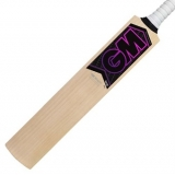 HAZE 202 HARROW KASHMIR WILLOW CRICKET..