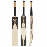 PUMA EVO SE GOLD JUNIOR CRICKET BAT