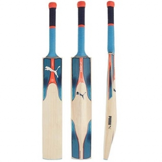PUMA EVOPOWER 1.17 JUNIOR CRICKET BAT