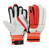 PUMA EVO 6 BATTING GLOVES