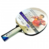 Butterfly Timo Boll Platinum - Wakaba ..