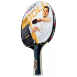 Butterfly Timo Boll Gold Pan Asia Tabl..