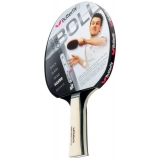 Butterfly Timo Boll Silver Addoy Table..