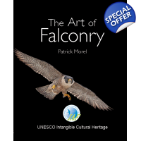 !!!NEW!!! The Art Of Falconry // Special IAF Edition // Last copies