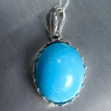 15.8ct Natural Turquoise sleeping beau..