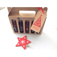 Christmas miniature gift box