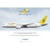 Royal Brunei Airlines B..