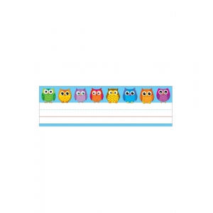 Colorful Owls Desk Nameplates