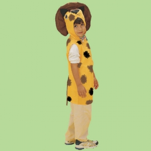 Animal Dressup costume: Lion