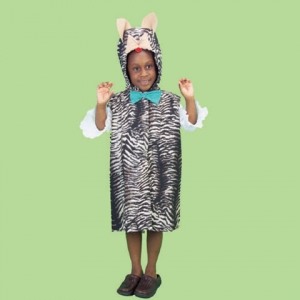 Animal Dressup costume: Cat
