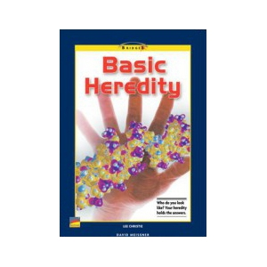 Bridges Science Gr 4: Basic ..