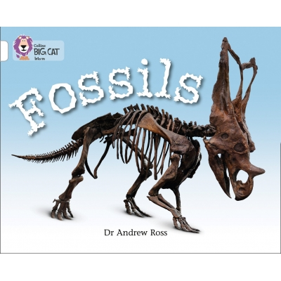 Big Cat 10 White: Fossils