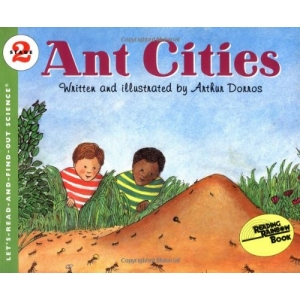LRAFO L2: Ant Cities