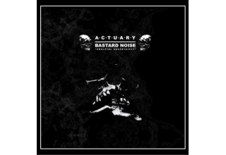 Actuary/Bastard Noise -Skeletal Uncertainty 12