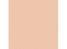 Crafters Acrylic - Pale Peach Mood