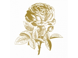 Anna Griffin Hotfoil Stamp Classic Rose